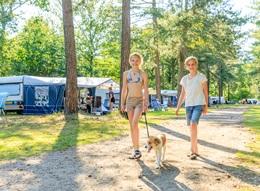 RCN de Flaasbloem | Camping pitch