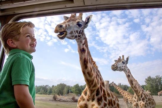 Safaripark
