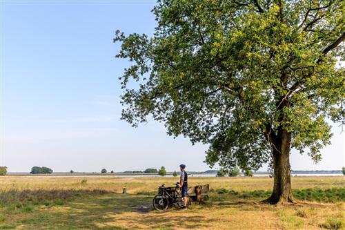 Vakantiepark RCN de Noordster in Dwingeloo, Drenthe