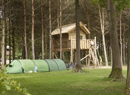 Camping pitch at De Wildenberg with tree house