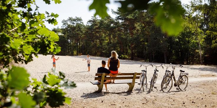 Wandelen en fietsen door het bos