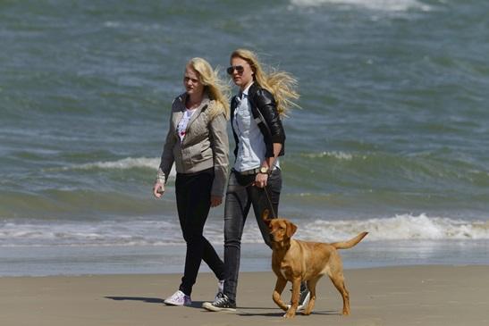 Vakantie met de hond in Zuid Holland
