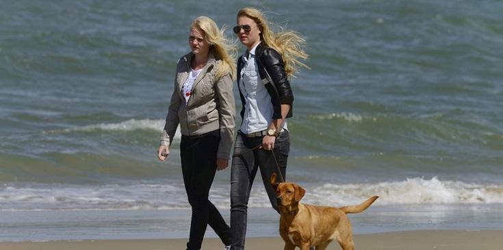 Met de hond aan zee in Zuid Holland