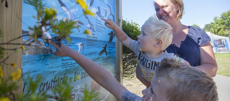 RCN-Port-l'Epine-camping-aan-Bretonse-kust-infobord-zeedieren (1)