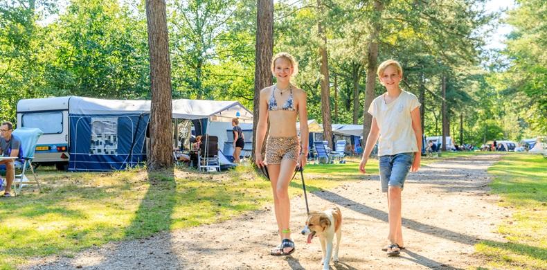 RCN-de-Flaasbloem-Vakantiepark-in-Brabant-Chaam-kampeerveld-kinderen-met-hond (5)