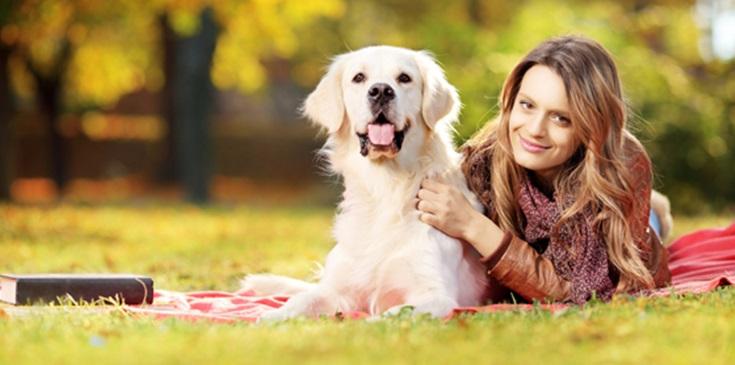 Extra's tijdens het hondenverwenweekend
