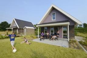 Holiday home de Heidebloem - Heidewoning