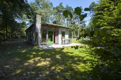 Bungalow Dennenburg - 2 persoons bungalow - 2XL