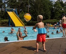 rcn-grote bos-zwembad (4)