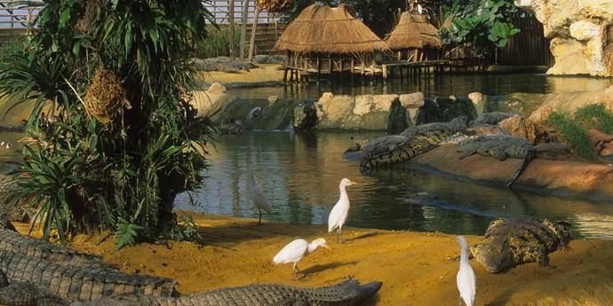 La Fermeaux Crocodiles