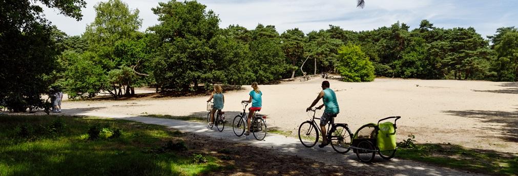 RCN-vakantiepark-het-Grote-Bos-fietsen-over-de-Utrechtse-Heuvelrug (2)