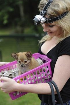 Vakantie met de hond in Drenthe